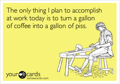 someecards.com - The only thing I plan to accomplish at work today is to turn a gallon of coffee into gallon of piss.