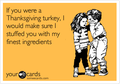 If you were a Thanksgiving turkey, I would make sure I stuffed you with my finest ingredients