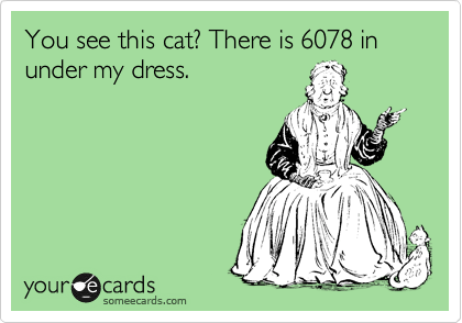 You see this cat? There is 6078 in under my dress.