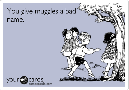 You give muggles a bad name.