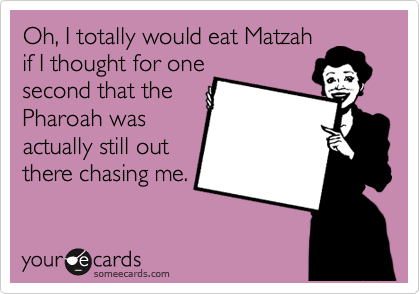 Oh, I totally would eat Matzah
