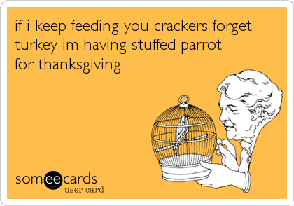 if i keep feeding you crackers forget turkey im having stuffed parrot for thanksgiving