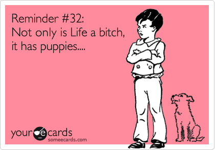 Reminder %2332: Not only is Life a bitch, it has puppies....