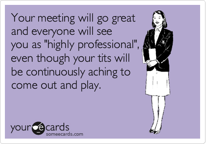 """Your meeting will go great and everyone will see you as """"highly professional"""", even though your tits will be continuously aching to come out and play."""