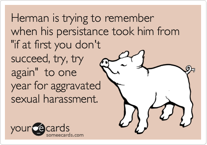 """Herman is trying to remember when his persistance took him from """"if at first you don't succeed, try, try again""""  to one year for aggravated sexual harassment."""