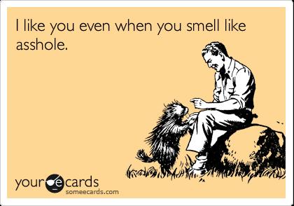 I like you even when you smell like asshole.