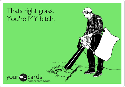 Thats right grass.