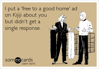 I put a 'free to a good home' ad on Kijiji about you but didn't get a single response.
