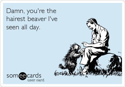 Damn, you're the