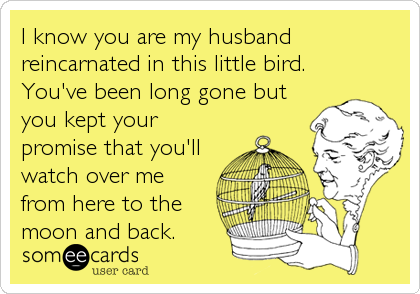 I know you are my husband reincarnated in this little bird. You've been long gone but you kept your promise that you'll watch over me from here to the moon and back.