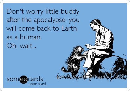 Don't worry little buddy after the apocalypse, you will come back to Earth as a human. Oh, wait...
