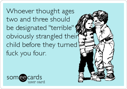 "Whoever thought ages two and three should be designated ""terrible"" obviously strangled their child before they turned fuck you four."