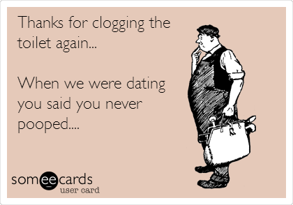 Thanks for clogging the toilet again...  When we were dating you said you never  pooped....