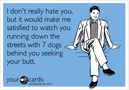 I don't really hate you,