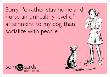 Sorry, I'd rather stay home and nurse an unhealthy level of attachment to my dog than socialize with people.
