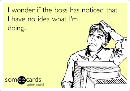 I wonder if the boss has noticed that I have no idea what I'm doing...