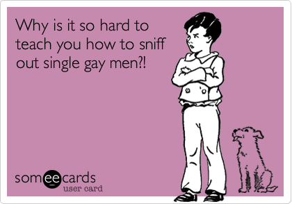 Why is it so hard to teach you how to sniff out single gay men%3F!