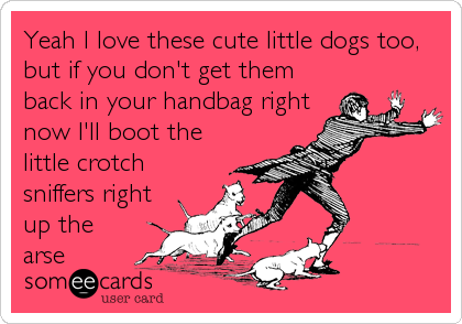 Yeah I love these cute little dogs too, but if you don't get them back in your handbag right now I'll boot the little crotch sniffers right up the arse