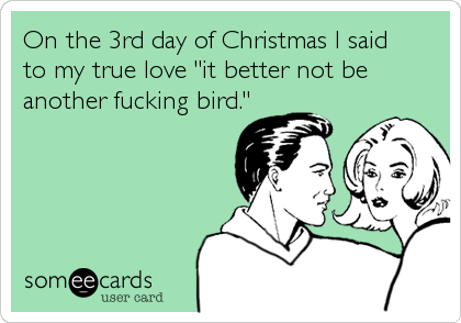 On the 3rd day of Christmas I said 