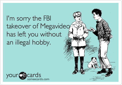 I'm sorry the FBI takeover of Megavideo has left you without an illegal hobby.