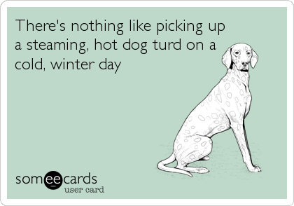 There's nothing like picking up a steaming, hot dog turd on a cold, winter day