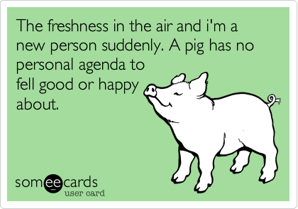 The freshness in the air and i'm a new person suddenly. A pig has no personal agenda to fell good or happy about.