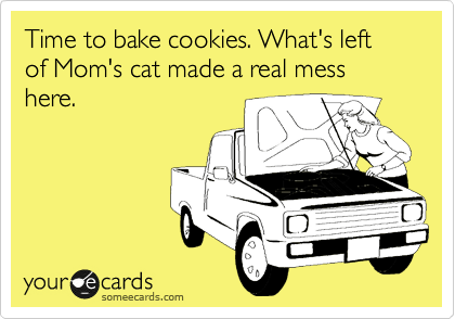Time to bake cookies. What's left of Mom's cat made a real mess here.