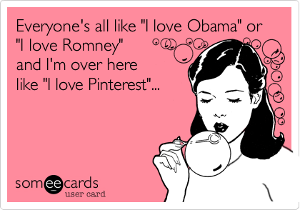 "Everyone's all like ""I love Obama"" or  ""I love Romney"" 