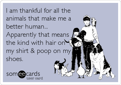 I am thankful for all the animals that make me a better human... Apparently that means the kind with hair on my shirt & poop on my shoes.