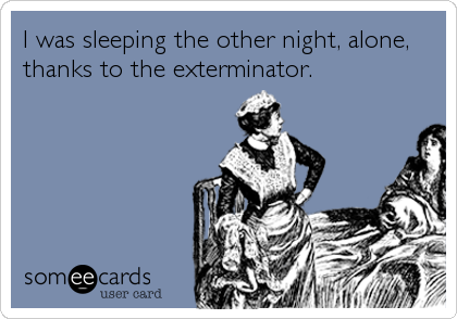 I was sleeping the other night, alone, thanks to the exterminator.