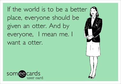 If the world is to be a better place, everyone should be given an otter. And by everyone,  I mean me. I want a otter.