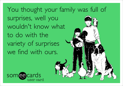 You thought your family was full of surprises, well you wouldn't know what to do with the variety of surprises we find with ours.