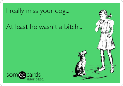 I really miss your dog...  At least he wasn't a bitch...