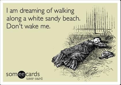 I am dreaming of walking along a white sandy beach. Don't wake me.