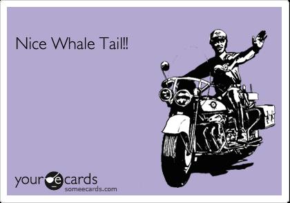 Nice Whale Tail!!