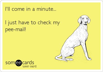 I'll come in a minute...  I just have to check my pee-mail!
