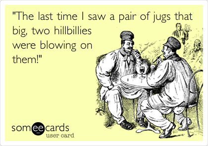 """The last time I saw a pair of jugs that big, two hillbillies were blowing on them!"""