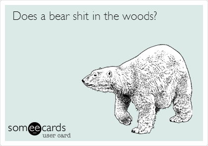 Does a bear shit in the woods?