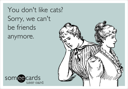 You don't like cats? Sorry, we can't be friends anymore.