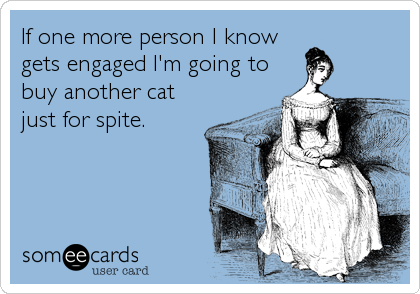 If one more person I know gets engaged I'm going to buy another cat just for spite.