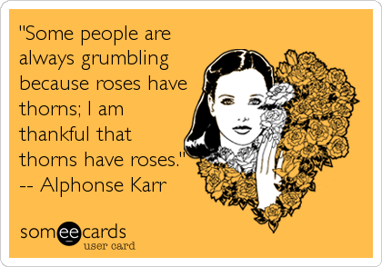"""Some people are always grumbling because roses have thorns; I am thankful that thorns have roses."" -- Alphonse Karr"