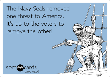 The Navy Seals removed one threat to America. It's up to the voters to remove the other!