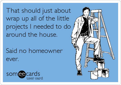 That should just about wrap up all of the little projects I needed to do around the house.  Said no homeowner ever.