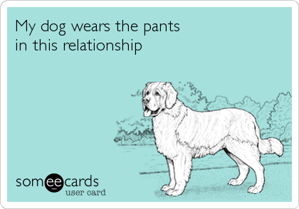 My dog wears the pants  in this relationship