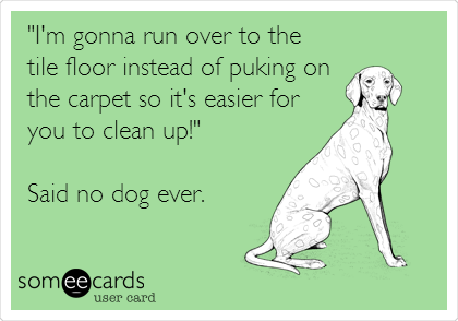 """""""I'm gonna run over to the  tile floor instead of puking on the carpet so it's easier for you to clean up!""""  Said no dog ever."""