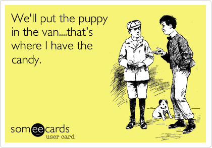 We'll put the puppy 