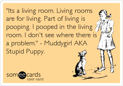 """Its a living room. Living rooms are for living. Part of living is pooping. I pooped in the living room. I don't see where there is a problem."" - Muddygirl AKA Stupid Puppy."