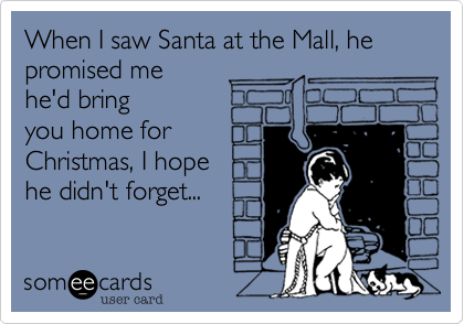When I saw Santa at the Mall, he promised me 