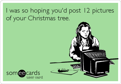 I was so hoping you'd post 12 pictures of your Christmas tree.