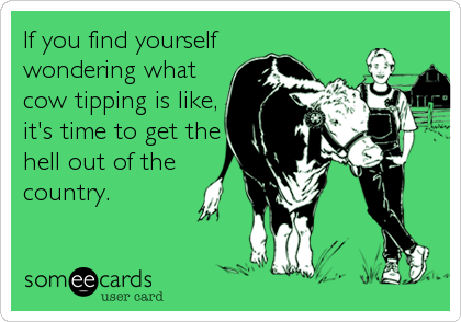 If you find yourself wondering what cow tipping is like, it's time to get the hell out of the country.